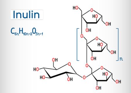 inulín prebiotikum